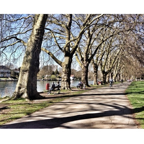 A #bright and #sunny #spring #weekend along the #RiverThames between #Kingston and #Teddington.    This #walking & #cycling #trail forms part of the 184 mile (294 km) #ThamesPath, which runs next to the #Thames from its source in #Gloucestershire to the #ThamesBarrier in #EastLondon.  #London #Twickenham #Richmond #UK #Britain #GreatBritain #squareready #snapseed (at Kingston Upon Thames)