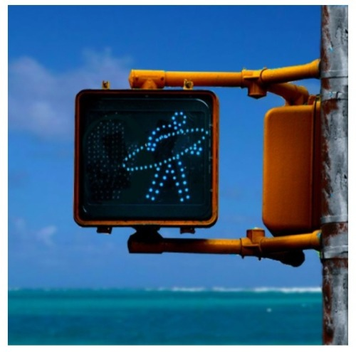 Surfer Crossing!