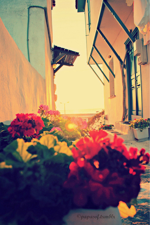 veezynika:  visit greece | Tumblr в We Heart It http://weheartit.com/entry/61677375