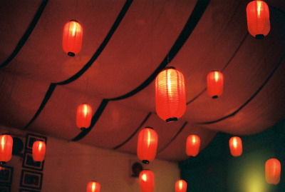 unterihremkissen:  Bookworm Lanterns 01 by bluetrayne on Flickr.