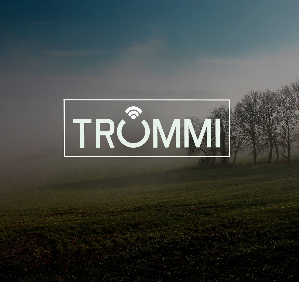 Working on Trummi | Inspiration for creative people. Launching in March!!!!