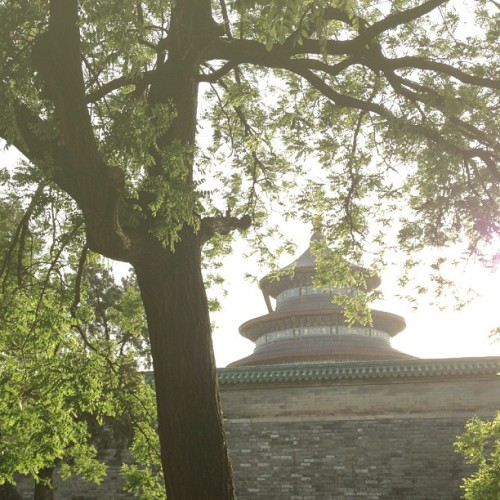 ⛅  (at 天坛 Temple of Heaven)