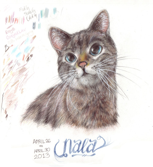 DD#3: NALA! Prismacolor pencils, white gel pen; somewhere between 5-8 hours on and off. I ran into a few problems when layering her fur, so the tones of the colors are darker than the reference photo.. She looks like a different cat, not as chubby as I wanted her to be ;_; I have an edited version without the color palette on the left, but I won't be posting that here. -AL
