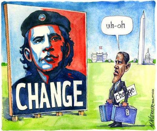 A cartoonist's eye view of Obama's first term