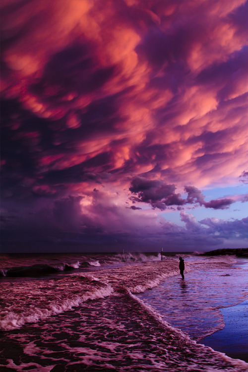 lensblr-network:  After a huge storm the sky turned pink and the magic began. by LaiN  (lain01.tumblr.com)