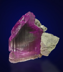 fuckyeahcrystals:  Kunzite, LiAl(SiO3)2. The pink variety of spodumene is called kunzite. It's bright color comes from manganese dopants. Manganese ions are likewise responsible for the permanganate ion, common as part of a basic solution that you probably have (or will) use in chemistry class.