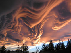 "Stunning. jtotheizzoe:  Lenticular and wave clouds are cool, but they don't hold a candle to the undulatus asperatus clouds. Not new, but new to science, its Latin name means ""undulating wave"". it's like staring up from under the sea, or from beneath an undulating ice formation, except we are seeing a cloud rather than a solid or liquid. They look ominous, but are rarely stormy. Why they form and what their pattern means? I haven't been able to find anything. Can you? (via APOD)"