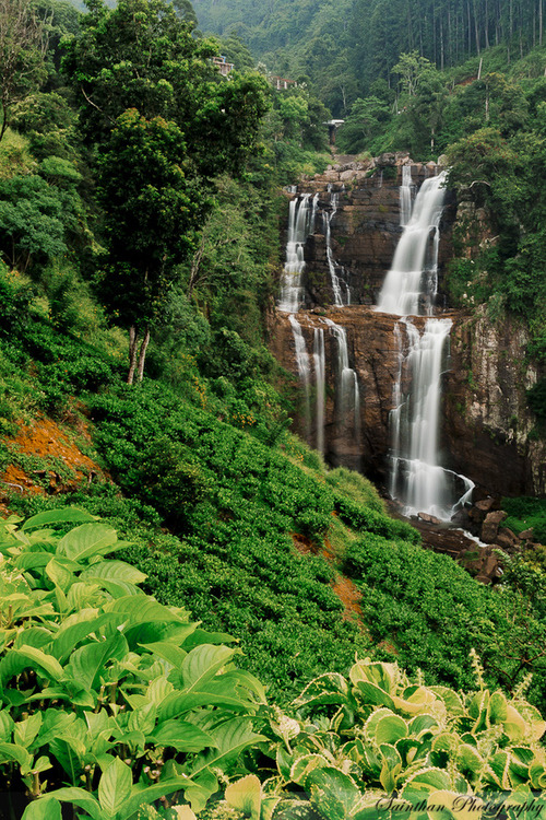 Waterfall, Sri Lanka photo via besttravelphotos
