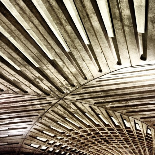 """Waffles is the ceiling."" - (at Metro Center Metro Station)"