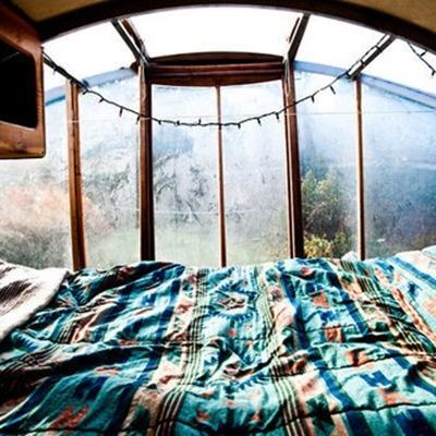 #travel#bedroom#vintage#plants#nature