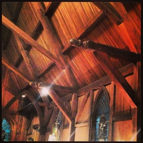 St. Paul's Episcopal in Graniteville. I've always loved the acorn woodwork.