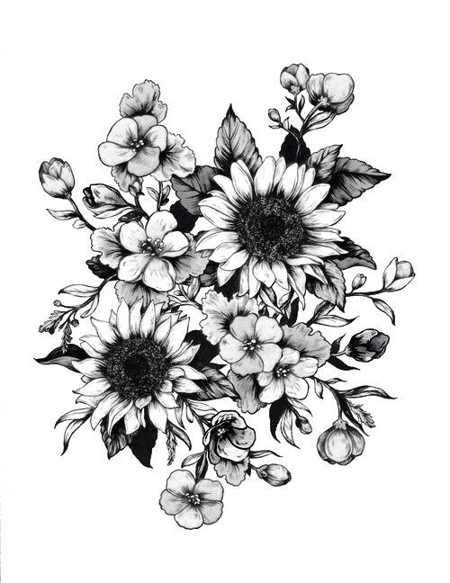 Black And White Drawings of Sunflowers Drawing Art Black And White