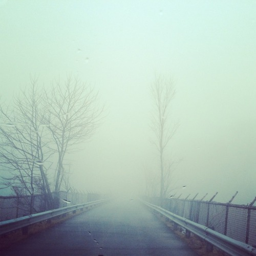 "hitrecord:  ""Foggy Roads"" Photo by Cmurphy62"
