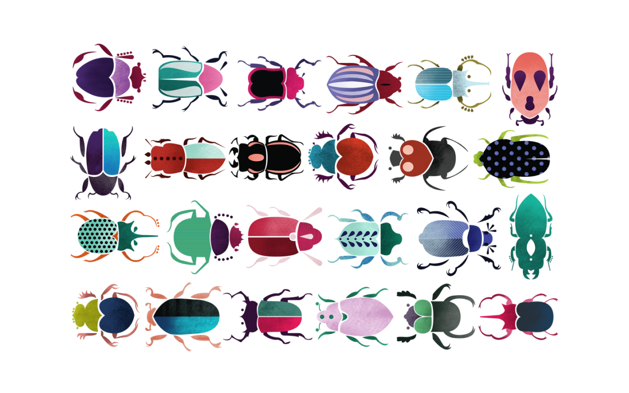 Beetles by Siobhán Gallagher