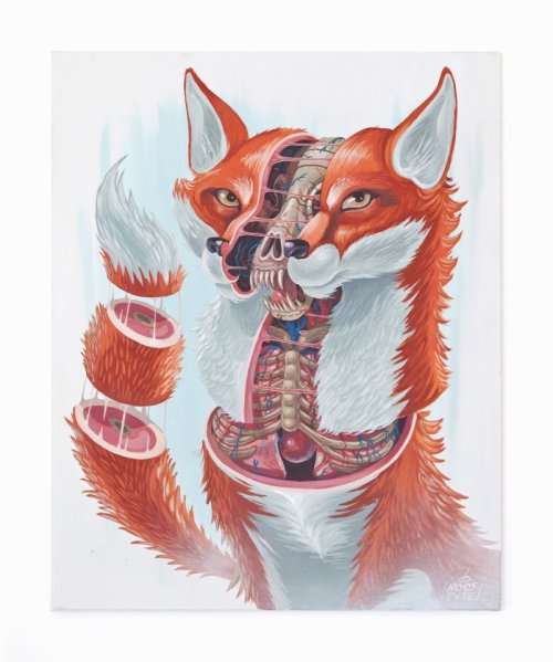 nychos:  DISSECTION OF A FOX (mixed media, 80x100cm)