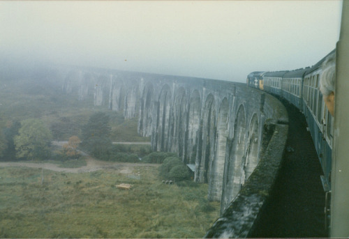 my-lordz:  blanchibou:  West Highland Line 1984 by Stuart McKenna on Flickr.  A large logo 37 :*curls up in corner happily remembering 37264 from the diesel gala*