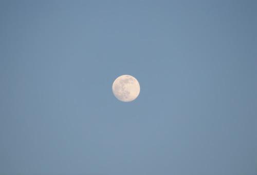 katiemcgrath:Lockdown Moons, England 2020 | Taken from my bedroom window