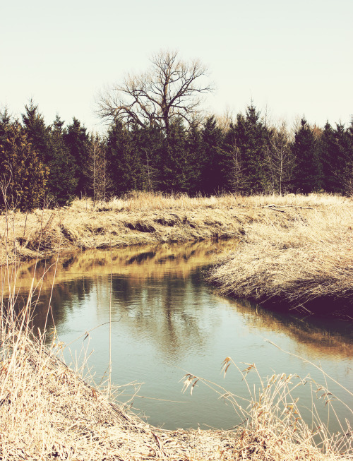 refinedmind:  River - by Thomas