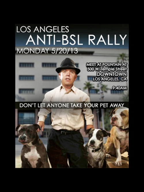 thetrueamericanbreed:  Please go out and show support!