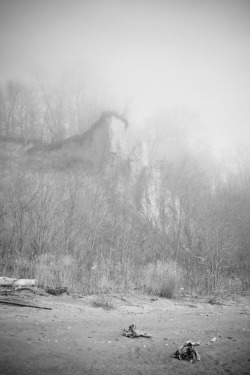 Foggy cliff on Lake Erie, No.2