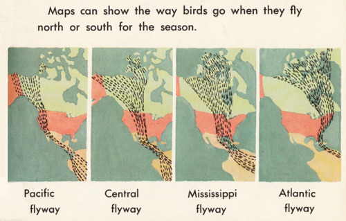 From How We Use Maps and Globes by Muriel Stanek, 1968  {Via land}