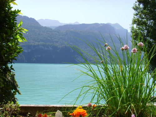Lake in Switzerland 2011