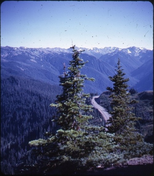 Hurricane Ridge, Washington, 1960s  Bruce Thomas
