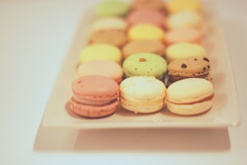 soyummybaby:  macarons by Shawna Lemay on Flickr.