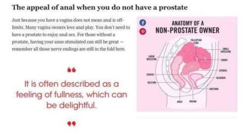porno anal voldelig sex
