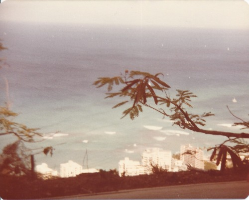 natcatwil:  Hawaii, 1979
