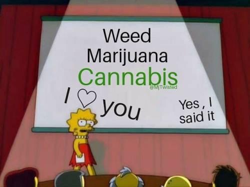 Weed, Marijuana, Cannabis! YES!  . . . . .  . . . .   #mjtwisted #cannabis #thc #marijuana #cbdoil #sativa #indica #bud #hybrid #cbd #hemp #mmj #medicalmarijuana #instaweed #weedporn #weed #weedmemes #cannabismemes #cannabisoil #high #mj2funny #green #cbdoil #weedmeme #cannabismeme #mjnj #hempcbd #kush #haze #420  https://www.instagram.com/p/CHMJ-QSpenJ/?igshid=1e257inhdol4t #mjtwisted#cannabis#thc#marijuana#cbdoil#sativa#indica#bud#hybrid#cbd#hemp#mmj#medicalmarijuana#instaweed#weedporn#weed#weedmemes#cannabismemes#cannabisoil#high#mj2funny#green#weedmeme#cannabismeme#mjnj#hempcbd#kush#haze#420