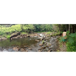 So we hiked along the water to the edge of a 80-100 foot waterfall / white cross  (at Hawaii)