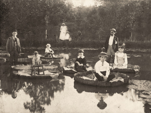 Children sitting upon lily pads in North Carolina, 1892
