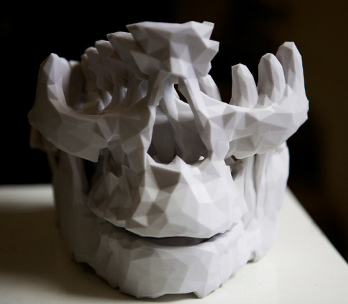 "myampgoesto11:  Mike Pelletier: Lucy Skull  ""In 2011 I was invited to create a piece for an exhibition called ""Ctrl-Z"" curated by 3d artist  Eric Van Straaten. This was a group exhibition of artworks created by various 3d printing processes. The model of the skull was generated from a friend's dental tomography scan. The form of the object was created by creating an array of copies of the skull, where each successive copy of the skull is scaled, rotated, and moved. The skull starts at life size at the front and ends up rotated 180 degrees and two times larger than life at the back."""