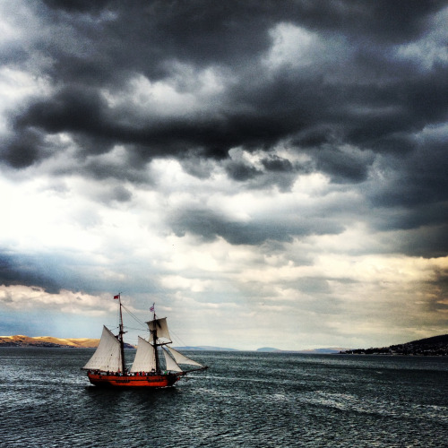 kayciebradford:  The Wooden Boat Festival in Hobart!