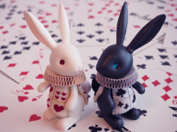 spidamnky:  Black and White Rabbits by ~hiyogon