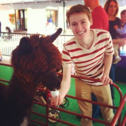 Here is a photo of me feeding what is either a llama or an alpaca, but I'm not sure which. Can any llama/alpaca experts confirm?