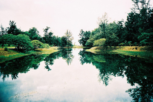 caulifl0wer:  untitled by DaTou laa on Flickr.