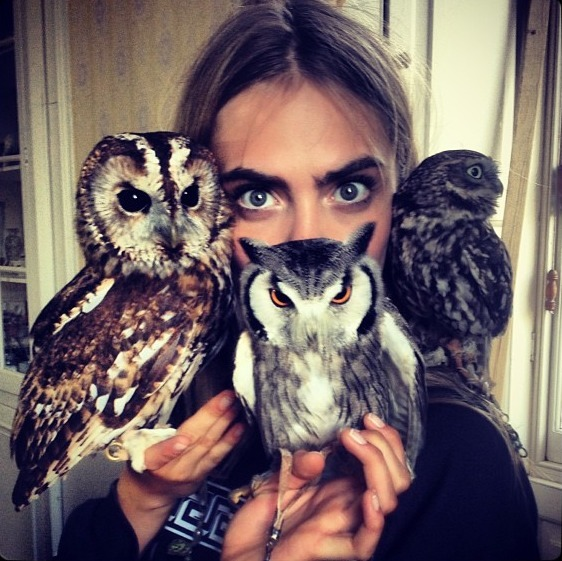 ma-ui:  New fav photo of cara