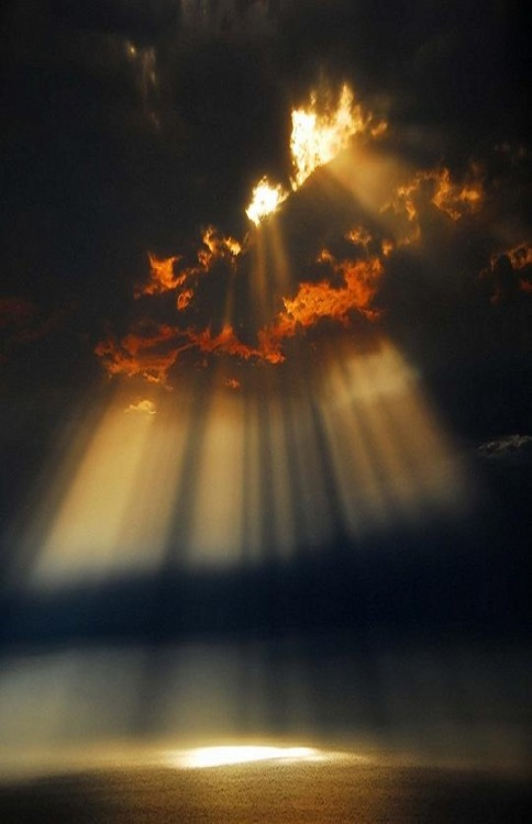 beautymothernature:  Beautiful Light Love Moments