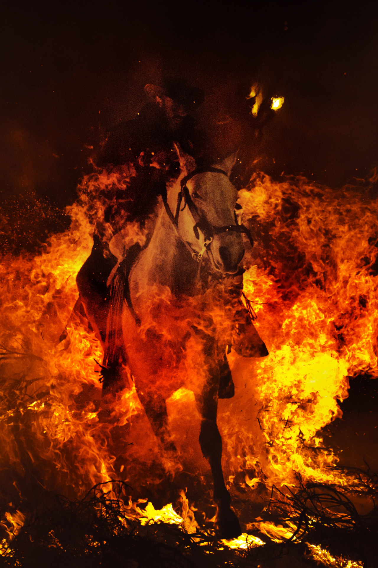 "Horse fire. A man rides a horse through a bonfire in San Bartolome de Pinares, Spain, in honor of Saint Anthony, the patron saint of animals. On the eve of Saint Anthony's Day, hundreds ride their horses trough the narrow cobblestone streets of the small village of San Bartolome during the ""Luminarias"", a traditional festival that dates back 500 years and is meant to purify the animals with the smoke of the bonfires, and protect them for the year to come. Cheval de feu. Un cavalier traverse un feu de joie avec son cheval dans la petite ville espagnole de San Bartolomé de Pinares en l'honneur de Saint Antoine, le saint patron des animaux. Des centaines de cavaliers sont venus défier les bûchers disséminés dans la ville de San Bartolome durant la fête des ""Luminarias"". Cette fête est une tradition païenne datant de plus de 500 ans et permet aux animaux défiant les flammes de se purifier et de se protéger des maladies et autres malheurs dans les années futures.  PHOTOGRAPHER : AP PHOTO/DANIEL OCHOA DE OLZA"