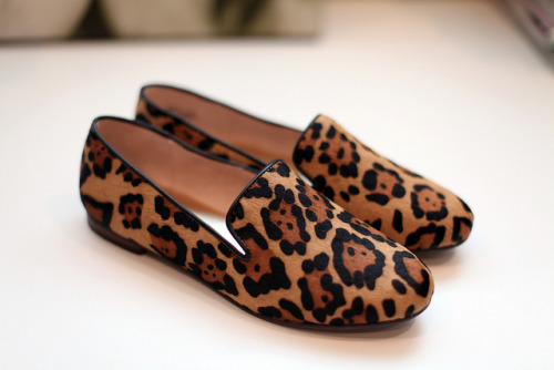 ankle boots fashion shoes summer boots clutch flats flip flops bah girl loafers stylist girly glam hand bag leopard print purse sandals leopard style outfit print scarpin high hells stylish fashionist