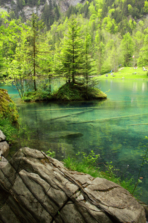 dearscience:  Blausee, a piece of heaven on earth