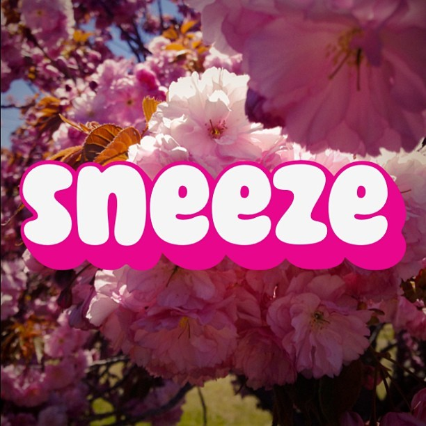 #sneeze #spring #achoo #allergies #photolettering