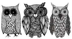 drawing art Black and White Sketch owls owl i love this owl drawing owl sketch