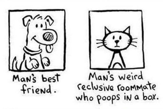Man's best friend…