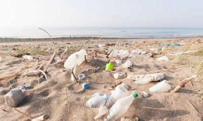 "Plastic retrieved from the sea to be made into bottles in pioneering recycling scheme |  Guardian.co.uk  Ecover, the green cleaning brand, said on Thursday it will use plastic waste retrieved from the sea to create an entirely new type of sustainable and recyclable plastic bottle. The Belgian company is working with plastic manufacturer Logoplaste to combine plastic trawled from the sea with a plastic made from sugar cane ('Plant-astic') and recycled plastic, in what it is calling a world-first for packaging. Products made from the packaging will go on sale next year. But the company was unable to give details of how much plastic would be retrieved or what percentage of ""sea plastic"" would be used in the packaging. Ecover chief executive, Philip Malmberg, said: ""We won't have a definitive figure on the amount we will retrieve we are just hoping to get as much as is possible and give fishermen an incentive to join the initiative and help clean the seas. We want to get the sea waste in as much of our packaging as possible – it will always depend on the amount and quality of the plastic they have managed to fish.""  Read the rest here. FWIW, Ecover owns Method, which also is producing packaging from ocean debris (mentioned previously on Unconsumption here)."