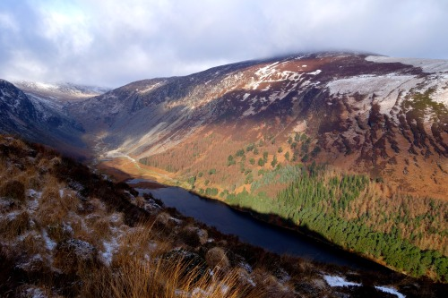 Winter invades the Emerald Isle in Ireland's Glendalough National Park.Photo: Bryon Powell