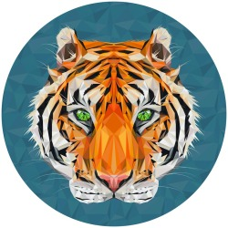 eatsleepdraw:  Tiger Tiger by Kirsten McIntoshSee more @toshy-illustration Get $15 prints here.
