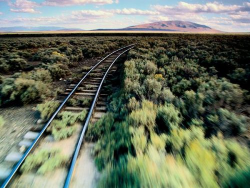 thethinker351:  Stunning photo taking from a moving train. That blurry/sharpness contrast
